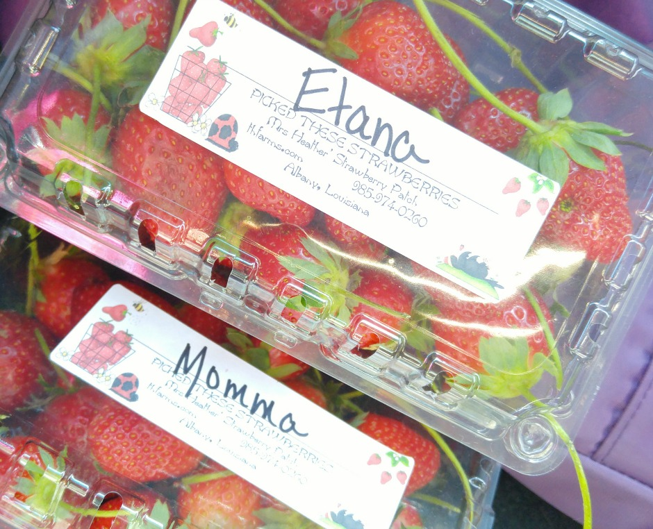 NJ Strawberries